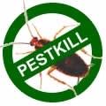 Pest Kill